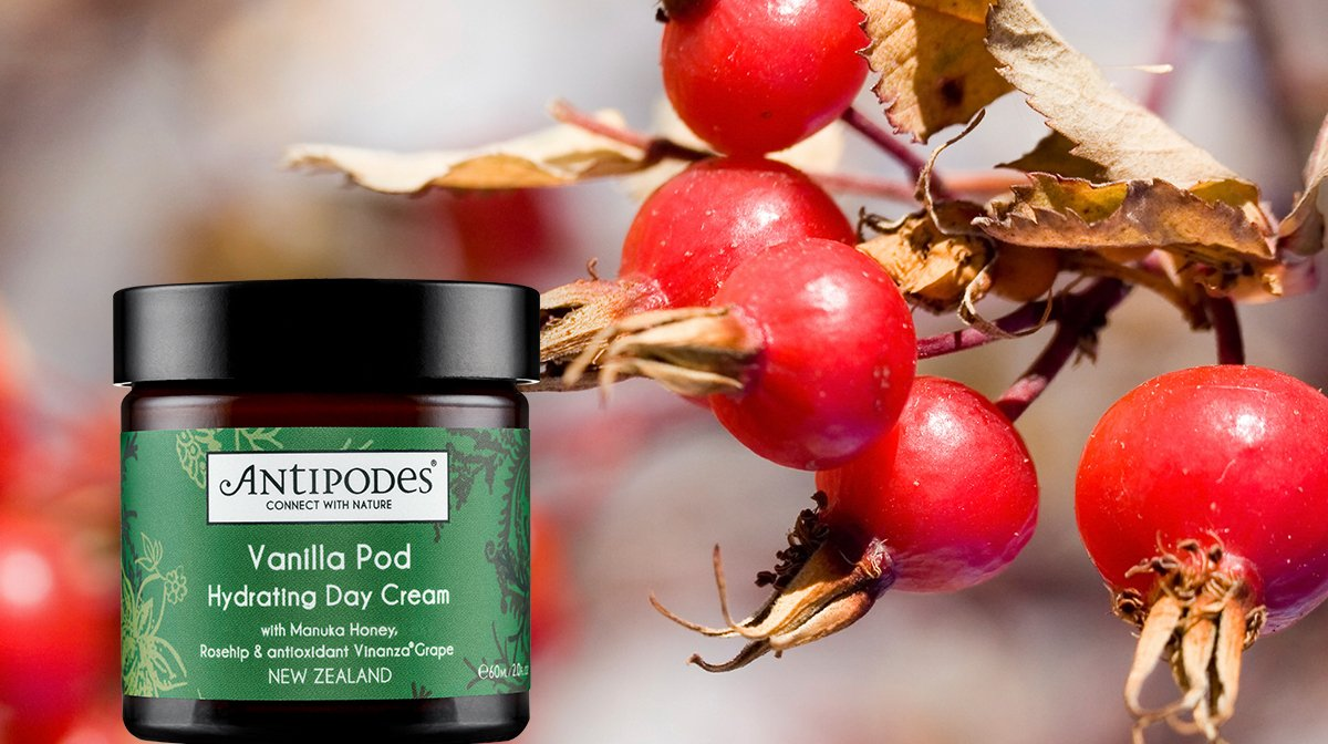 Antipodes Hydrating Day Cream