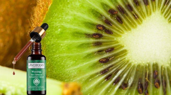 Worship Skin Defence Antioxidant Serum | Antipodes UK