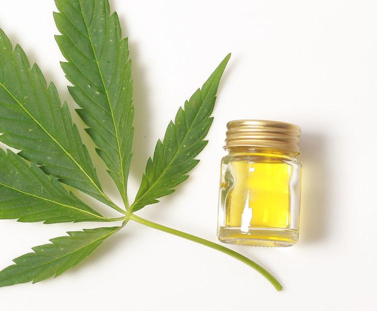 Cannabis Leaf and CBD Oil 1
