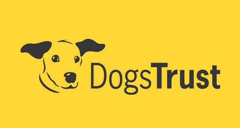 Why Preloved Are Raising Money For Dogs Trust