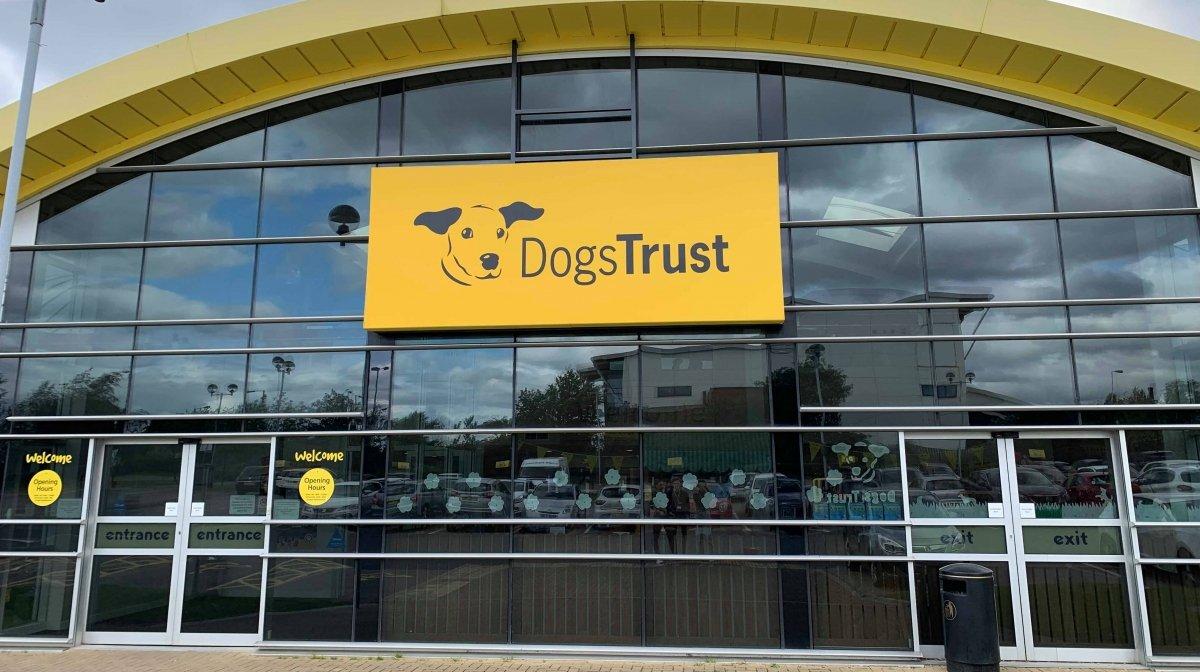 Preloved Raises Money for Dogs Trust