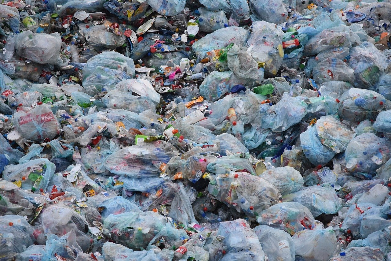 The Plastic Carrier Bag Charge: 5 Years On
