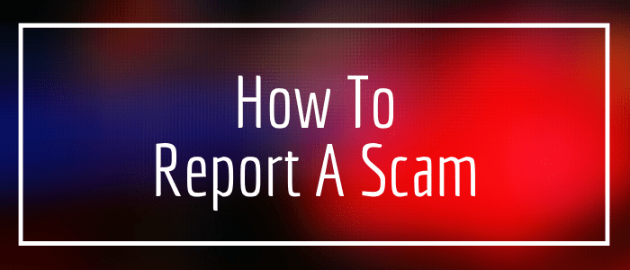 How To Report A Pet Scam