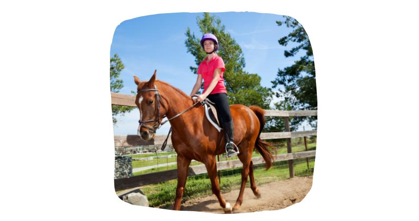 horse riding posture