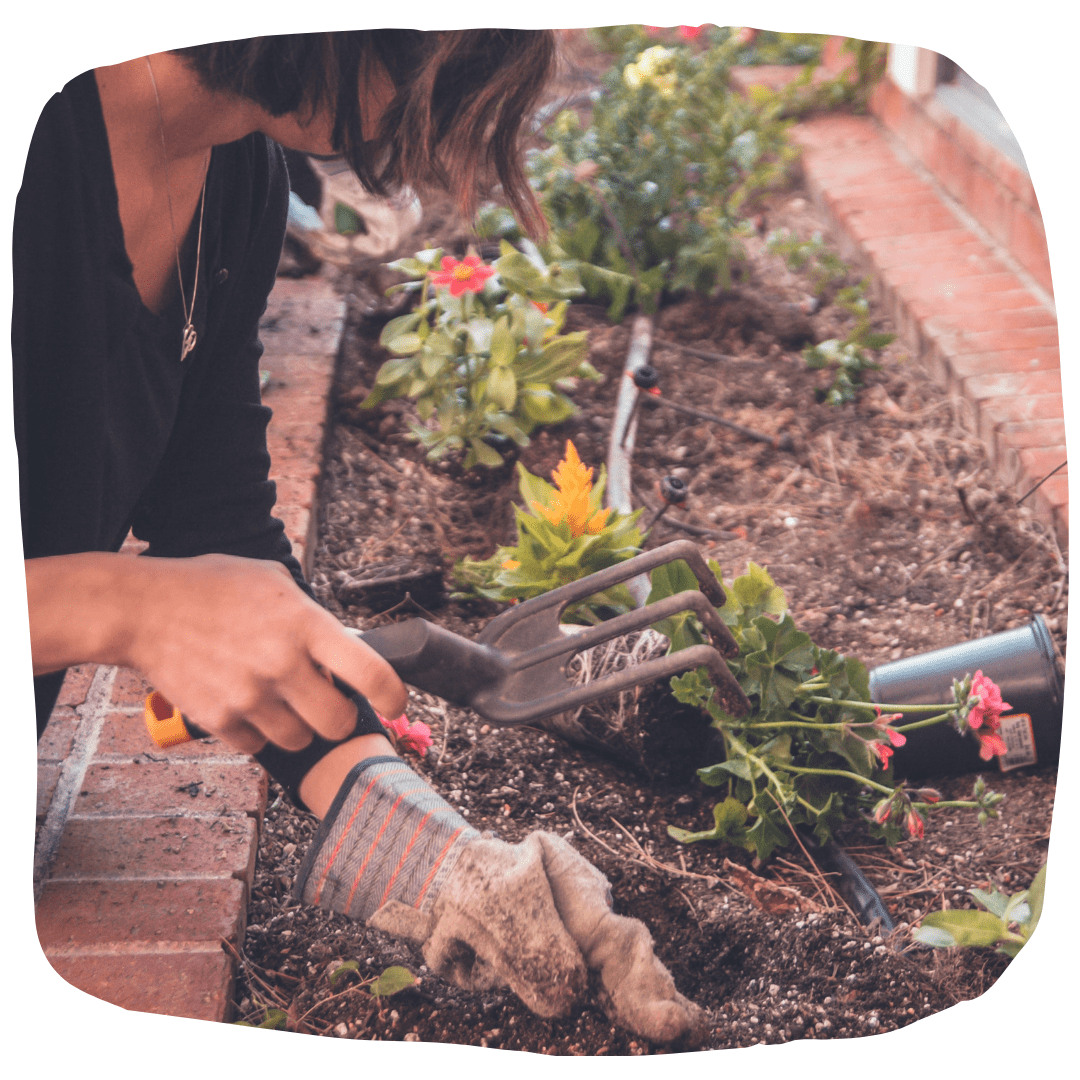de-weeding the garden