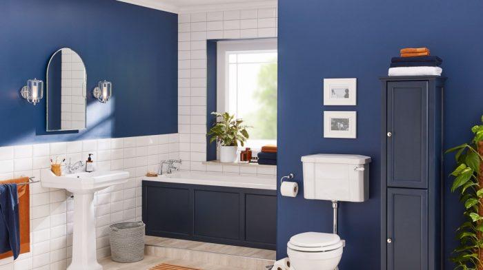 Design Ideas for a Blue Bathroom
