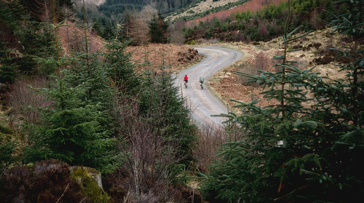 Endura cyclists head down long road surrounded by trees