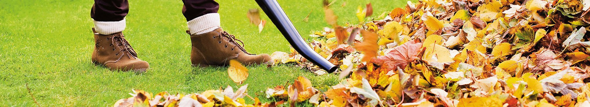 Garden Jobs In October