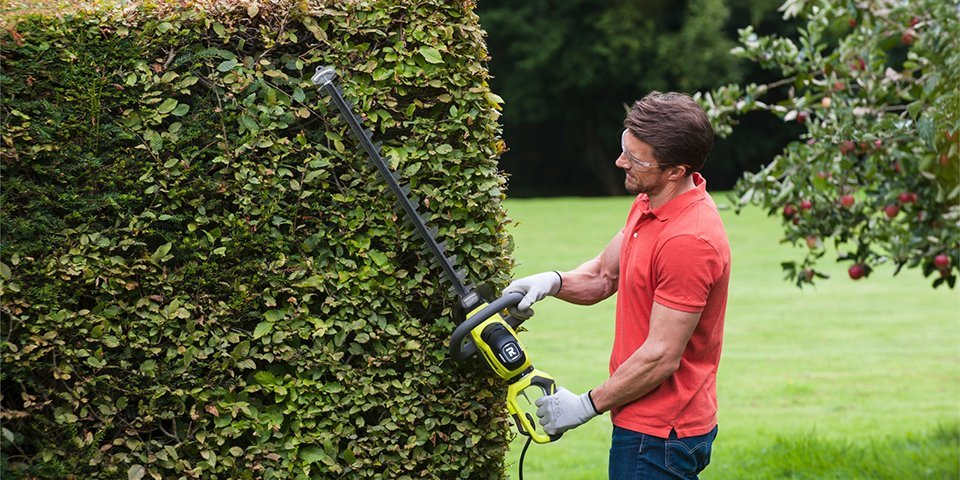 Hedge Trimmer Buying Guide