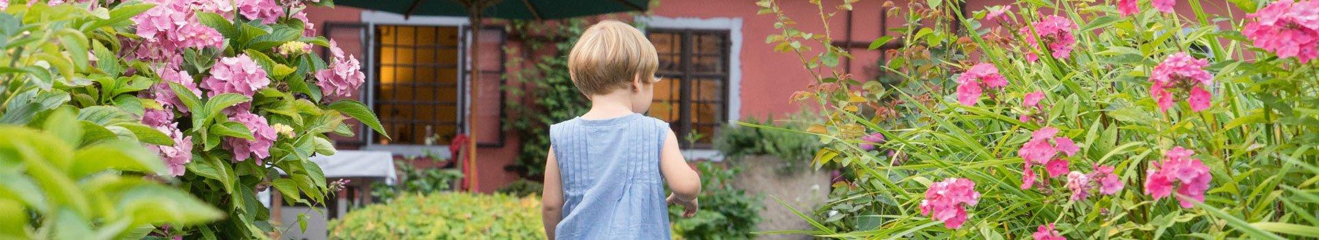 Plan And Design A Family Garden