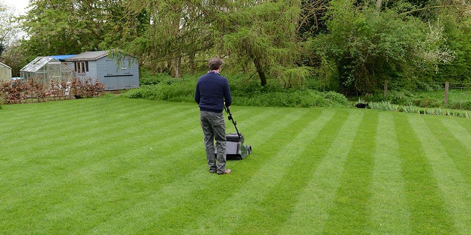 Lawn Blog – May