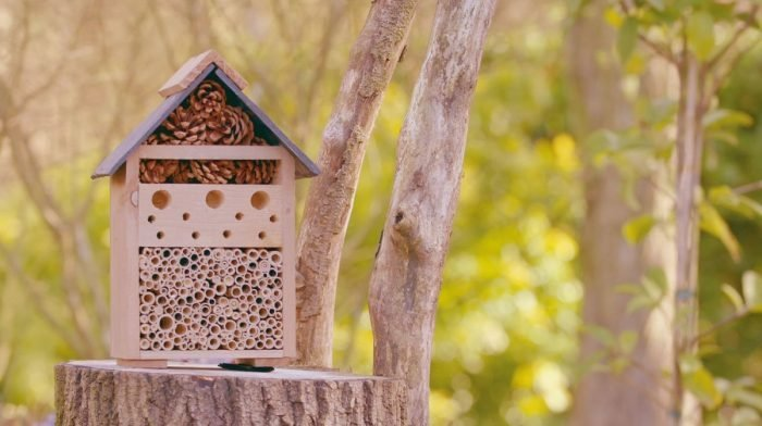 Two Days To Make Your Garden A Haven For Wildlife