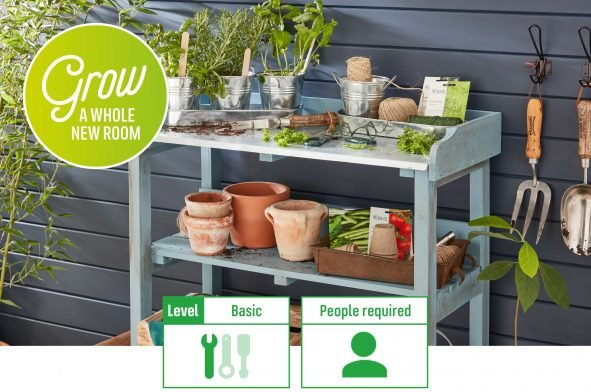 How To Create and Grow Your Own Herb Garden