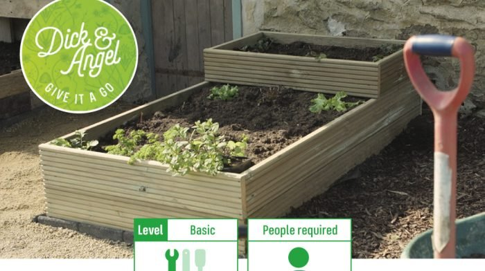 How To Build a Planter Bed with Dick