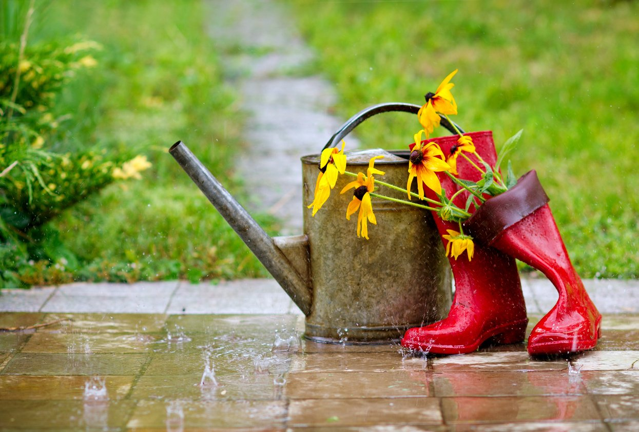 Watering can and wellington boots in the rain