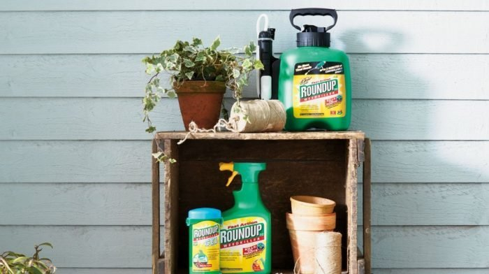 How To Choose The Best Weed Killer