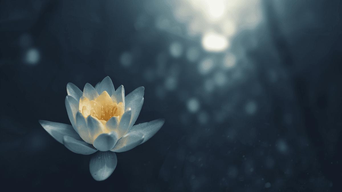 Skincare Journey and Meditation with Ambi Kavanaugh