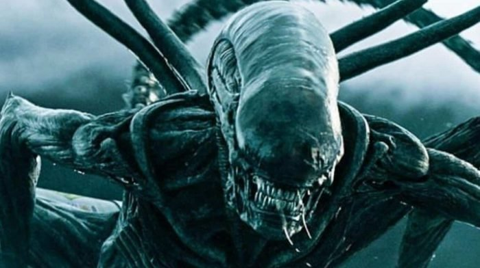 The Creature Feature: Movies With Bite