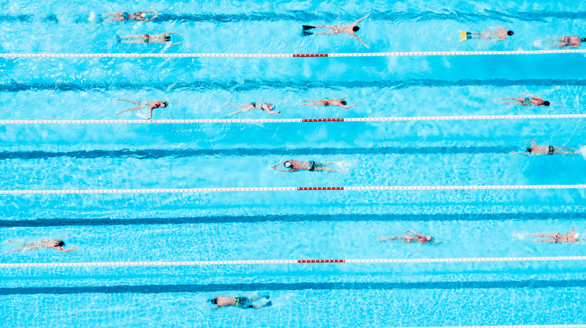 A number of swimmers completing drills in a swimming pool