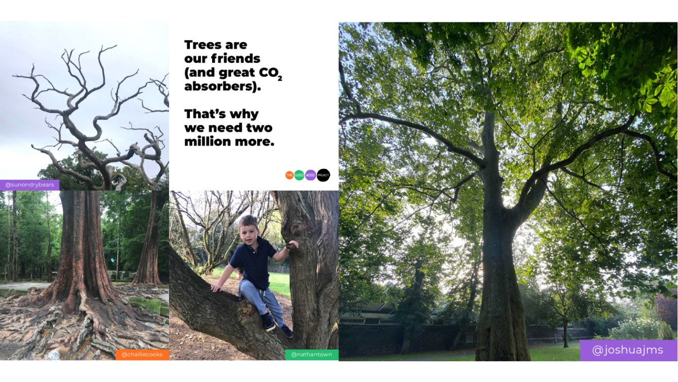 The Good Wood Project banner image
