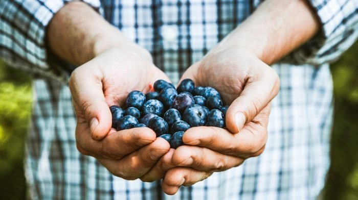 What are antioxidants and how can I eat more?