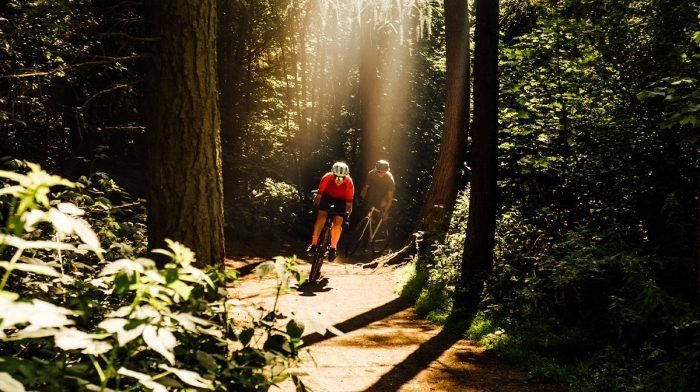 Cyclists head through a dark woods, lit by streams of sunlight in Endura cycling gear
