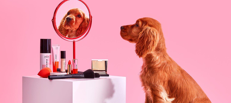 Top 5 des marques de beauté sans cruauté animale