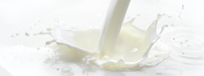 Does Milk Make You Fat? How Dairy Effects Your Weight Loss Efforts