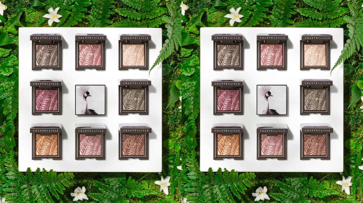 Conscious eyeshadow collections that support wildlife conservation