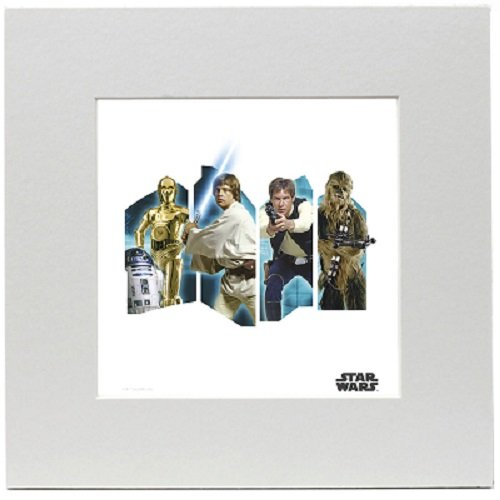 Star Wars Rebel Print