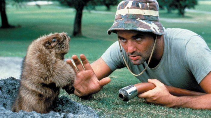 Caddyshack At 40: How A National Lampoon Disaster Became An All Time Great