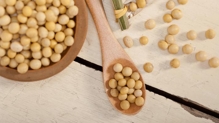 5 Alimenti Vegetali Ricchi Di Proteine