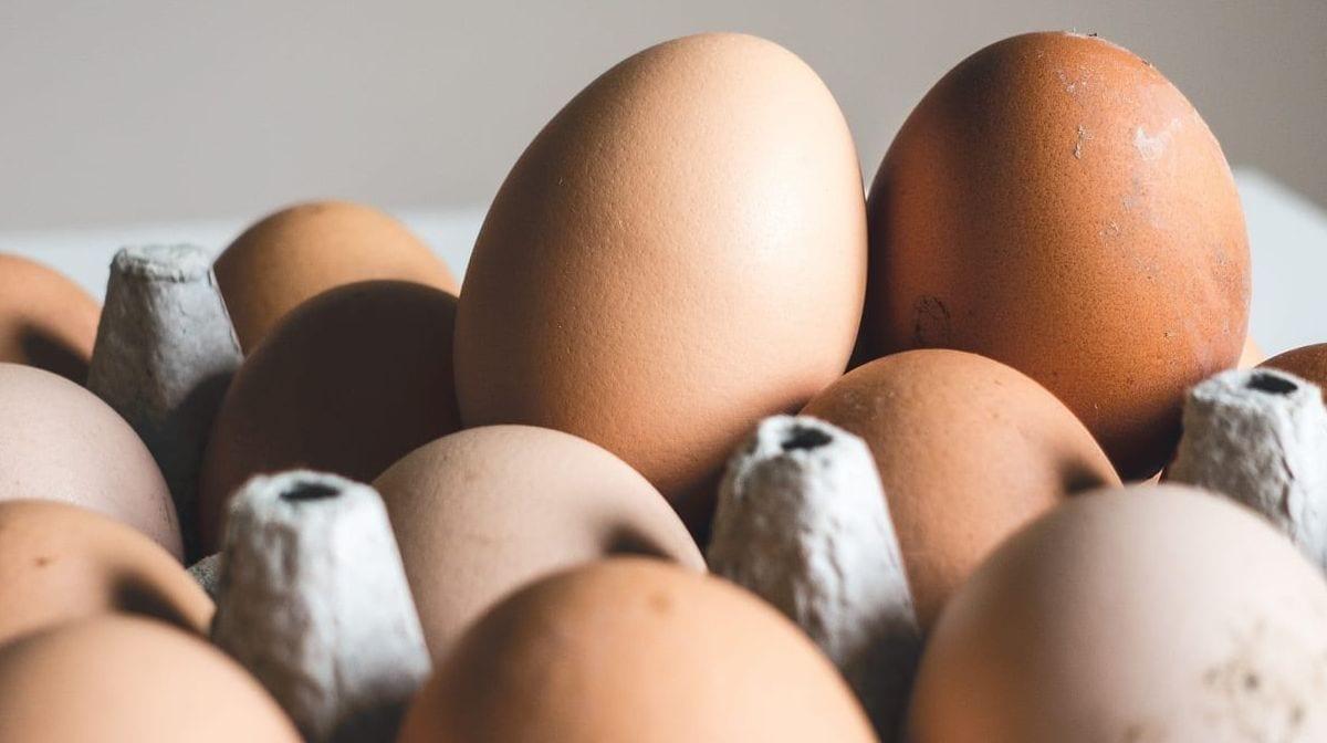 Hvad er æg-diæten? Er den god til vægttab?