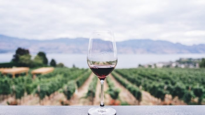 What Is Trans Resveratrol?   Benefits, Side Effects, Dosage