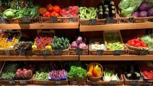 The 10 Most Nutrient-Dense Foods