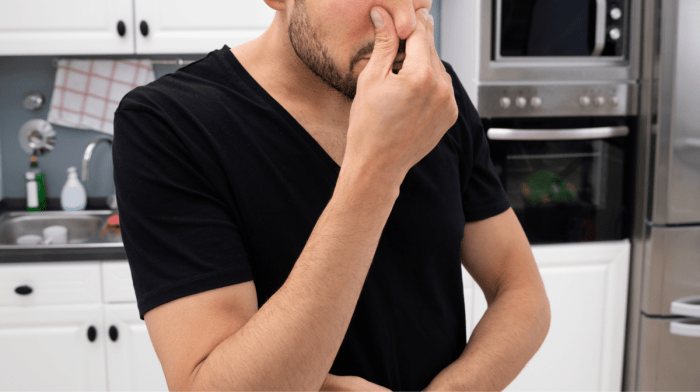 ホエイプロテインを飲むと臭いがきつくなるってほんと?|腸内細菌の変化と整える方法を解説