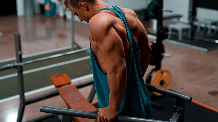 Ojentajatreeni, jolla kasvatat lihasta | Ojentajalihaksen pitkäpään harjoituksia
