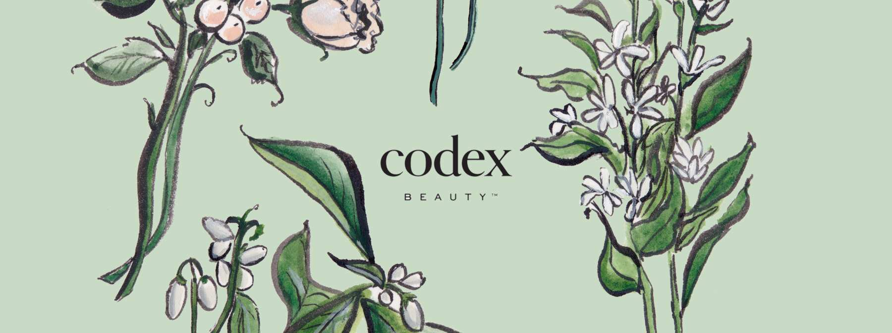 What's the Scoop with Codex BEAUTY