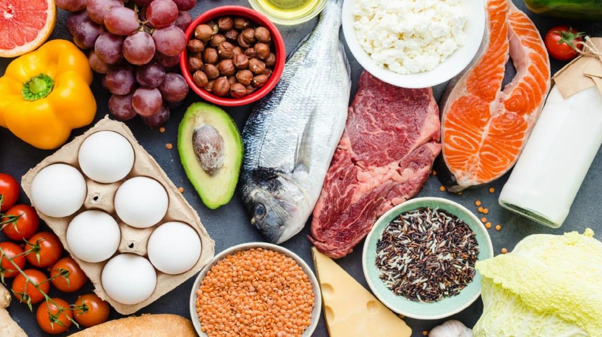 sources de protéines et lipides