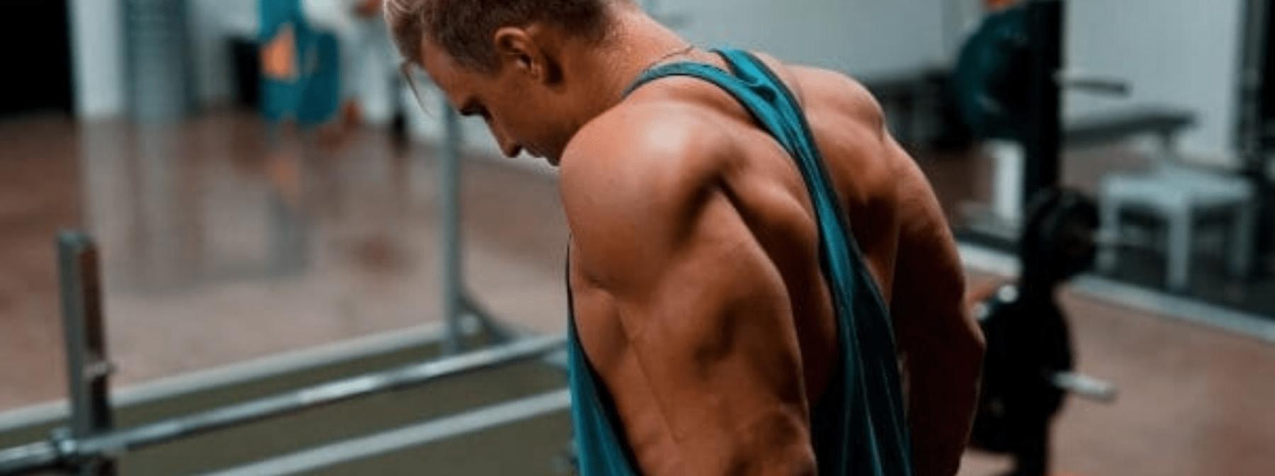 Développer la longue portion de votre triceps !