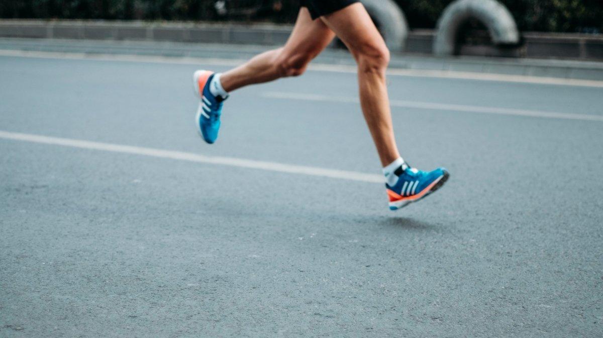 Protéines et sports d'endurance : font-ils bon ménage ?