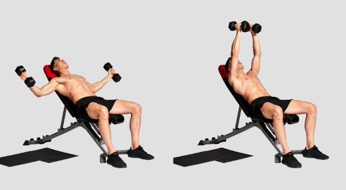 Baue Muskeln auf mit diesem Brust & Rücken Workout