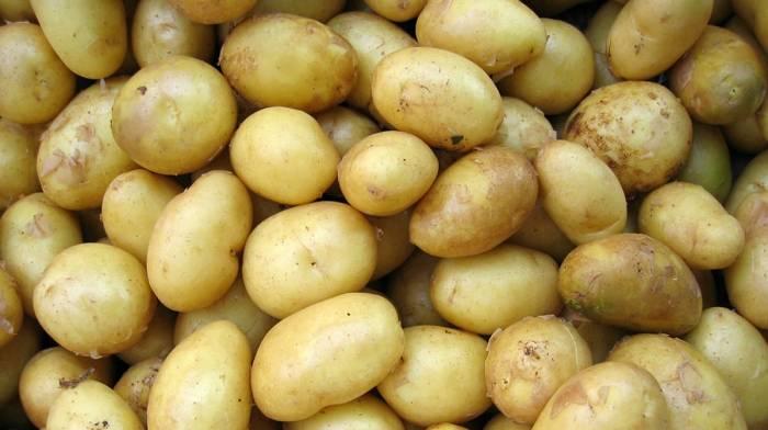 Die Kraft der Kartoffeln & Wieso du deine ganze Kraft nicht verlieren wirst | Die Top-Studien der Woche