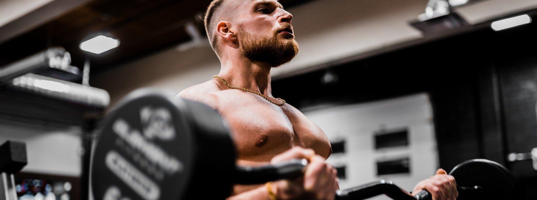 Creatin und Muskelaufbau?