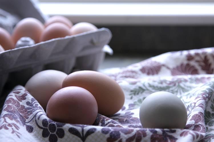 Was ist die Ei-Diät? Und wie funktioniert sie?