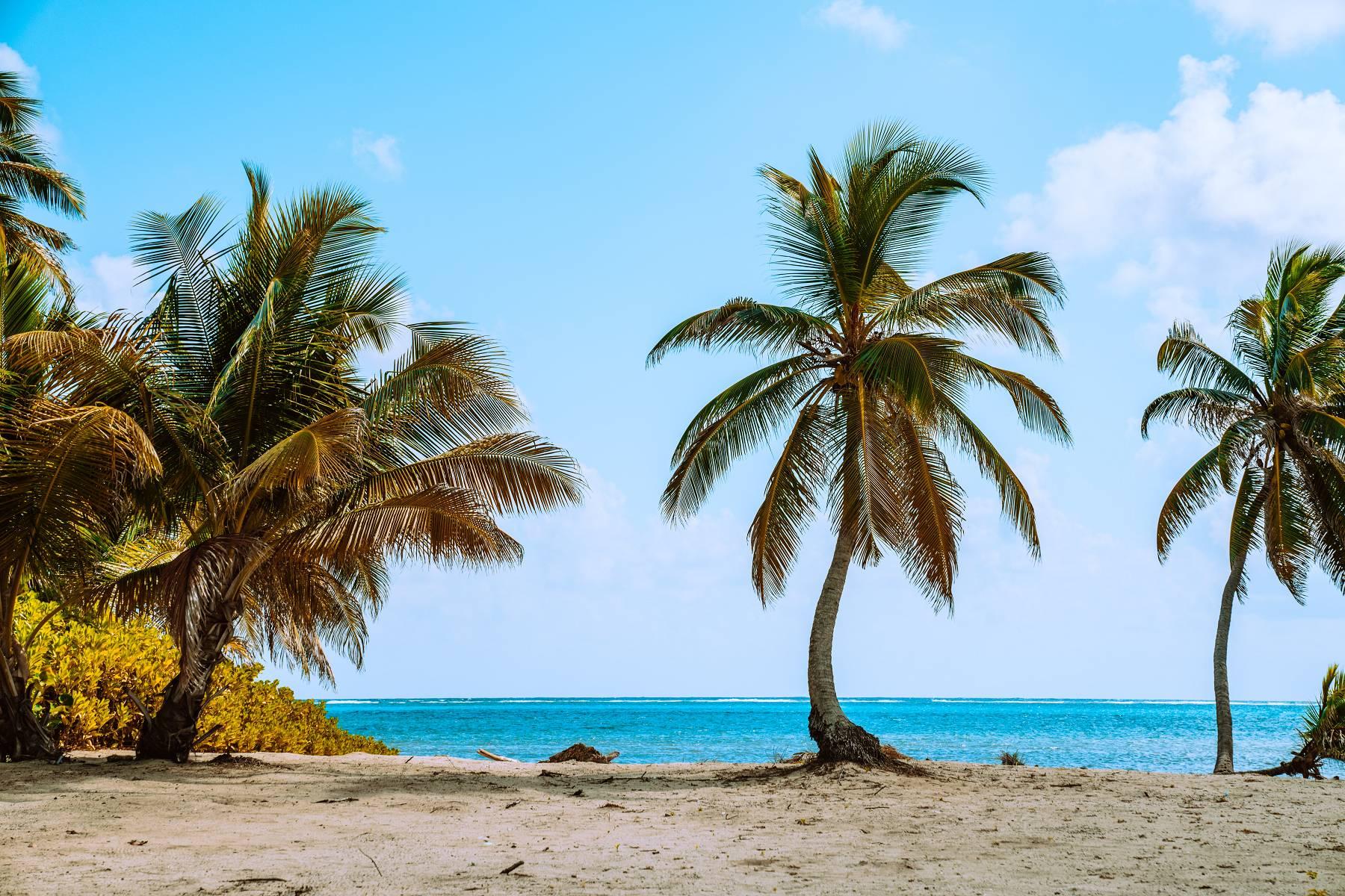 Love Island: So viel können die Kandidaten nach der Show mit Instagram verdienen