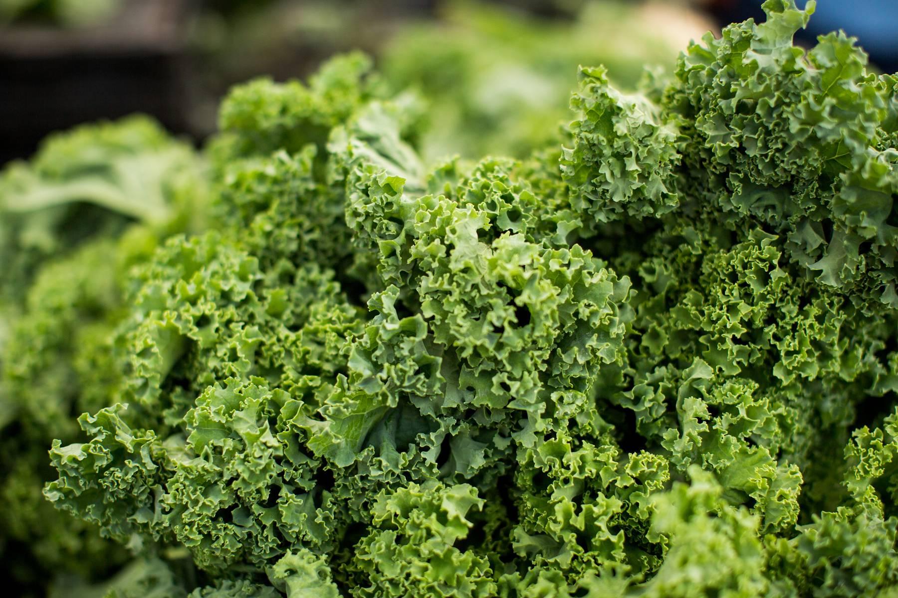 Was ist Vitamin K?   Wirkung, Mangelsymptome & Einnahmeempfehlungen