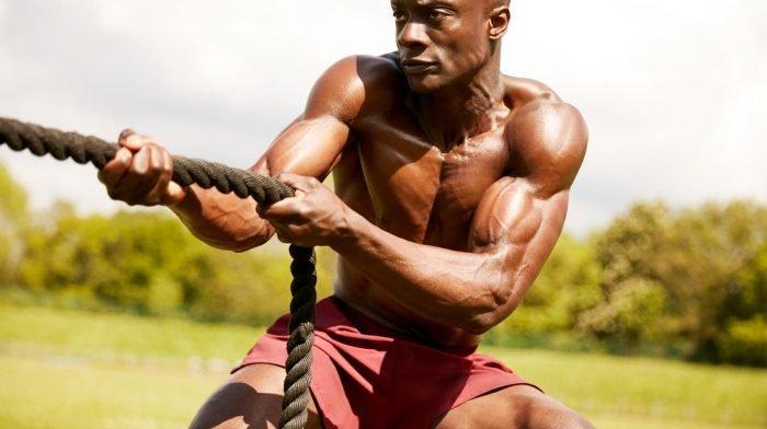 6 Lebensmittel für deinen Muskelaufbau Ernährungsplan