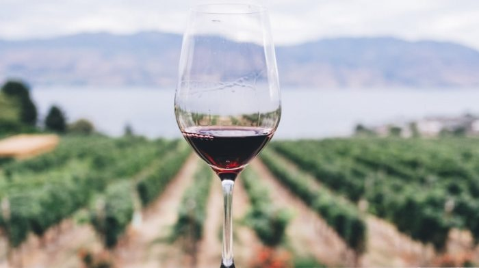 What Is Trans Resveratrol? | Benefits, Side Effects, Dosage