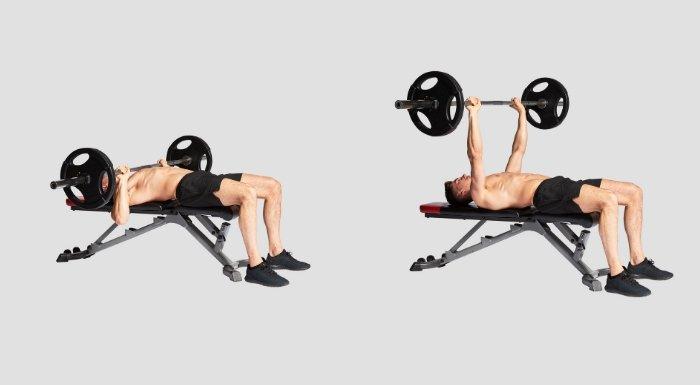 entrenamiento de pecho y espalda